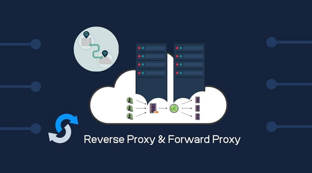 Reverse Proxy and Forward Proxy