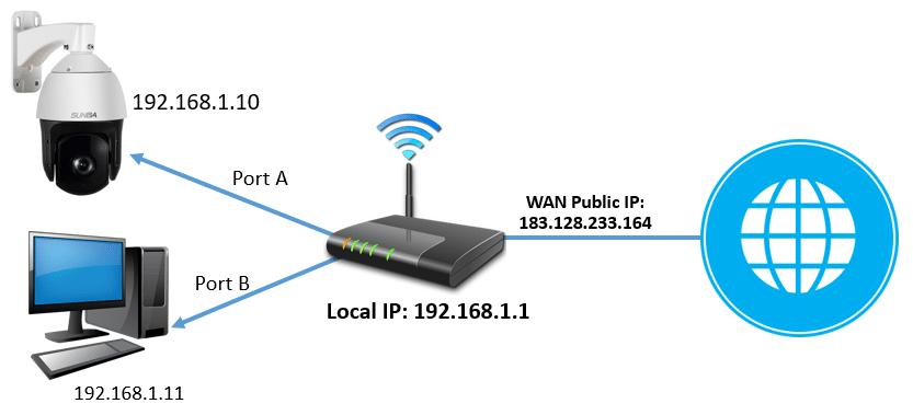Local IP and Public IP